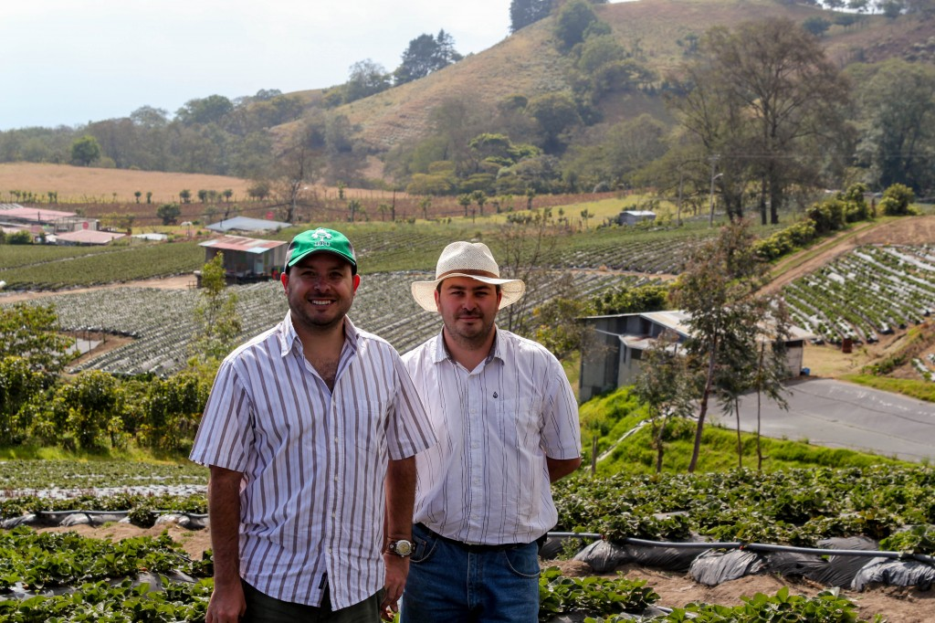 Brothers Daniel and Carlos Gutierrez, along with their father, own and operate this Costa Rican farm outside of Cartago.